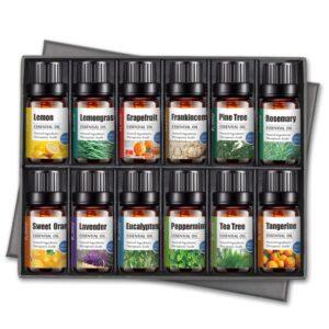 essential oil set of 12